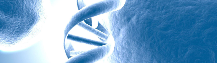 Genetica moleculara a epilepsiei astazi