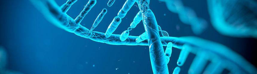spirala ADN - cromozomi