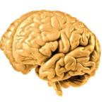 holoprozencefalia
